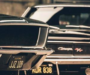 cars, muscle cars, and fastback image