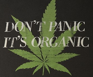 weed, organic, and marijuana image