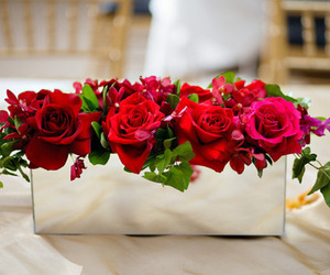 flower, red, and roses image