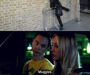 funny, harry potter, and muggles image