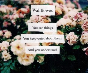 floral, quotes, and vintage image