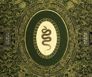 art, snake, and gold image