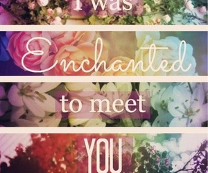 enchanted, flower, and floral image