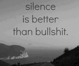 silence, bullshit, and quotes image