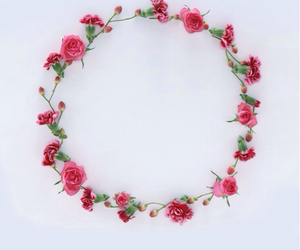 crown, pretty, and flower image