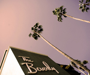 Beverly Hills, california, and love image