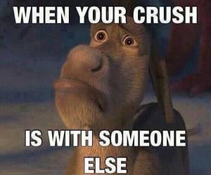 crush, sad, and donkey image
