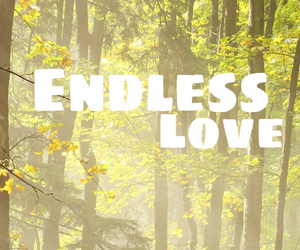 endless, sun, and endless love image