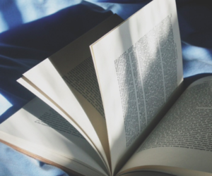 book, bed, and blue image