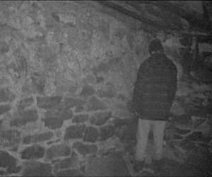 blair witch project image