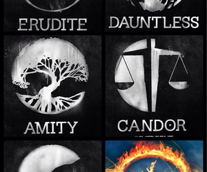 divergent, amity, and dauntless image
