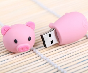 pendrive, pig, and pink image