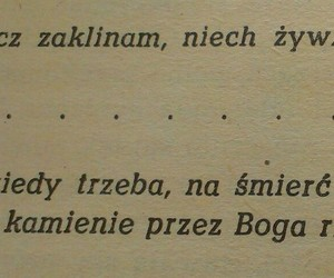 book, Poland, and quotes image