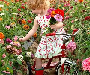 flowers, cute, and bike image