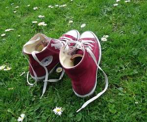 all stars, converse, and red converse image