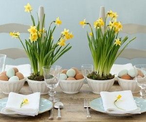 brighter color pastels, casual dining decoration, and decoration. image