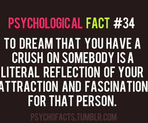 crush, random facts, and psychological fact image