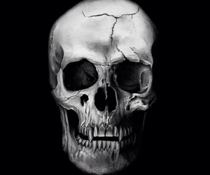 black and white, cool, and skull image