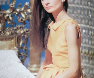 audrey hepburn, hair, and audrey image
