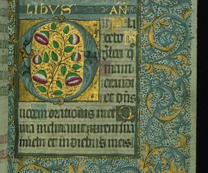Illuminated Manuscript image