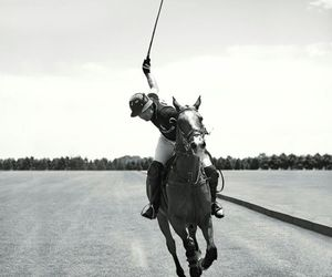 horse, Polo, and ralph lauren image