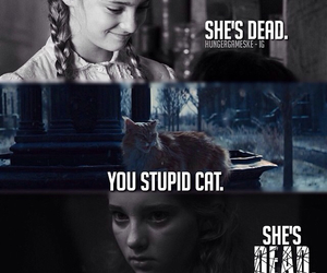 sad and hunger games image