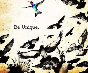 unique, bird, and quote image