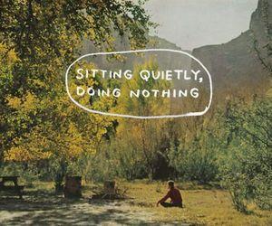 nature, quiet, and true image