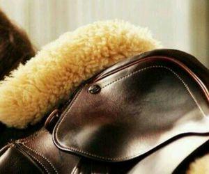 horse, saddle, and love image