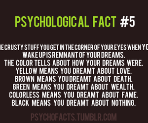 Dream and fact image