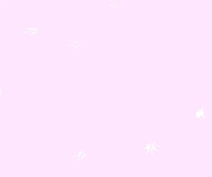 header, pale, and pink image