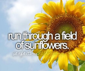 sunflower, field, and before i die image