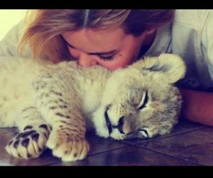 baby lion, cute, and friends image