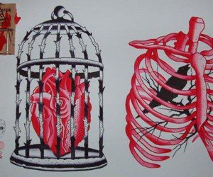 heart, bird, and cage image