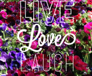 live, love, and <3 image