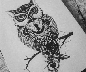 owl, drawing, and key image