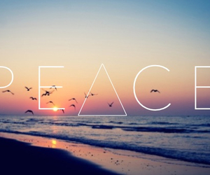 peace, beach, and summer image