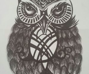 art, owl, and pen drawing image