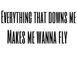 fly, quotes, and toughts image