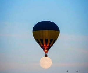 moon, sky, and bird image