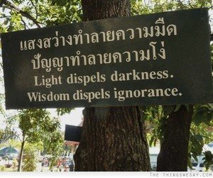 Darkness, ignorance, and life image