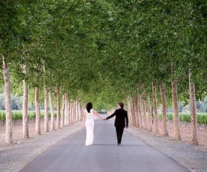 couple, trees, and wedding image