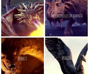 dragon, eragon, and harry potter image