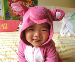 baby, pig, and cute image
