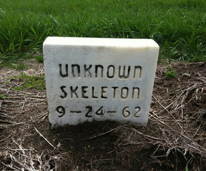 skeleton, unknown, and death image