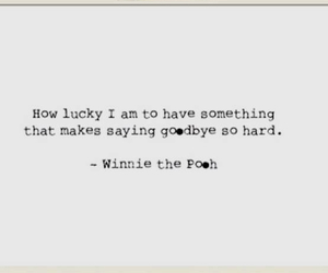 quotes, winnie the pooh, and love image