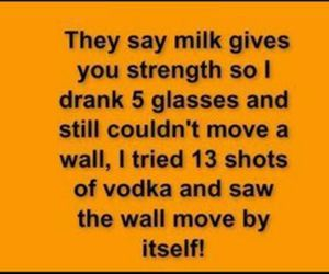 funny, lol, and vodka image