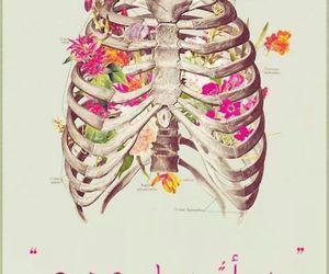 flowers, bones, and skeleton image