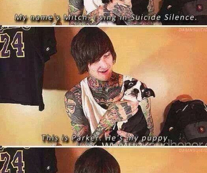 suicide silence, mitch lucker, and parker image