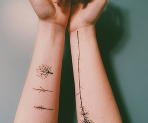 tattoo, tree, and indie image